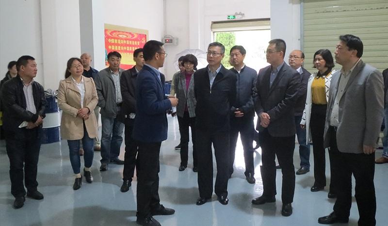 安庆市市长陈冰冰先生莅临我司指导工作
